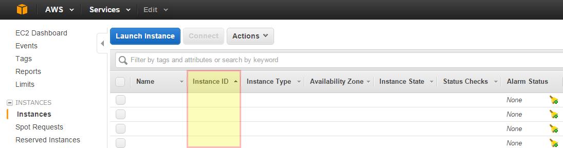 AWS instance ID