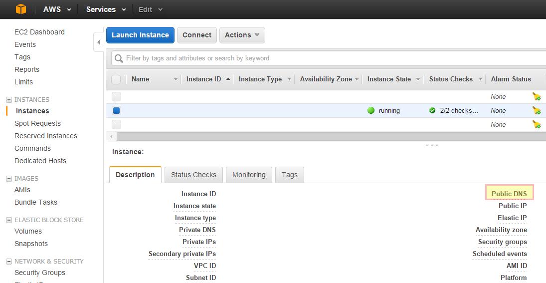 AWS console public DNS
